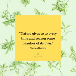 And just like that, spring is nearly a wrap! And a whole new crop is coming. And we simply cannot wait to see what nature has in store. 💐   Thus is the essence of #seasonality.  Tell us your favorite summer blooms in the comments below. 👇  We'll kick it off.  Also, excited to share we are headed to the @slowflowers summit in San Francisco at the end of the month where we will meet some of the bloomers & shakers we've been admiring from afar! Soooo looking forward to meeting you! 💃  Happy Monday, #floweristas!  FOLLOW @theflowry for best in bloomcraft for people, spaces and occasions.   #mondaymotivation #mantramonday #musings #quotes #empowerment #sayings #petalsofwisdom #flowers #florals #postivevibes #positivity #wordstoliveby #thegoodquote #qotd #mondayblooms #bloombeam #bloomcraft #theflowry