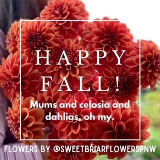 Now, it's starting to feel real, the change of season. 🍂 It's in the air & in our bones. The chill. The anticipation.   You may have noticed it's dahlia season. No newsflash here.   T A -  D A H L I A ! ☀️   Some #facts about #dahlias:  🌺 Their heads can grow up to 1 ft in diameter!  🌺  The official flower of both #Seattle & San Francisco, there are 42 recognized species. 🤩   🌺  Some more distinctive types include Formal & Decorative, Cactus, Single-flowered, Waterlilly, Pompom (or Ball) & Collarette. 🤷♀️   🌺  Dahlias were originally classified as a vegetable because of their edible tubers. 🤔   Too many dahlias, too little space, here's a roundup of what's changing our brains & putting us in @brunomars mood, all responsibly grown & sustainably designed, from east to west, north to south, across the USA. 🇺🇸  A round of 👏 👏 👏  please to:  @sweetbriarflowerspnw   PNW @flowerclvb   Philadelphia, PA & New York, NY @lemonsqueezyblooms   Grantsville, UT @mollyoliverflowers   Brooklyn, NY  @velvetandgreenfloral   San Jose, CA  @morning.glory.flowers   West VA  @threebrothersbloom   Camano Island, WA  @petalsandpagesflowers   Reno & Tahoe, NV  ✔️ Know where & when your flowers bloom.  ✔️ Request #nofloralfoam. ✔️ Do without plastic wrap, blooms look good #naked.  The Flowry connects flower lovers with eco-conscious florists prioritizing American grown, seasonal flowers & sustainable design practices. Visit The Bloomlist (link in bio) 👆 for your next floral gifting occasions.  #whatsbloomingnow #seasonalflowers #sustainabledesign #floraldesign #nofloralfoam #onthebloomlist #americangrown #farmtovase #flowers #localflowers #weddingflowers #flowerstagram #flowering #floralstories #underthefloralspell #slowfloralstyle #slowliving #pursuepretty  #ihavethisthingwithflowers #afloweraday #seasonalfloweralliance #econscious #sustainability #theflowry