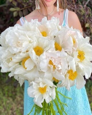 """From the expression (or is it a drinking game?), """"never have I ever,"""" seen peonies like these, incredible Krinkled White Alaskan peonies from @mountainfieldfarm farm, which stopped us in our tracks. 🤍   As you may know from @thefloralsource who recently returned from a peony jaunt to Alaska, #Alaskapeonies bloom when the rest of the USA is without - so scoop 'em up while you can! They grow through August(ish). They are seasonality, defined.   And while they likely need to go on a plane to arrive to your vase or #bridalbouquet, there are tradeoffs to every transaction. So, to #carbonoffset their journey, consider giving up meat for a week! 🐮  In all seriousness though, there are ways to reduce or neutralize carbon emissions for just about everything - and prioritizing locally & #Americangrown #flowers is a smaller footprint in the right direction. 💐   What we're also L O V I N G right now are #scabiosa, aka pincushion flower, which grows all summer long through fall. Colorful and versatile (both dried and fresh), these frilly beauties are from @petalpinkflowers in Eugene, OR. 💖   Another personal fave are showy #celosia, aka cockscomb, Prince of Wales feather & prince feather, which blooms in the most regal colors from summer through frost.   According to @johnnys_seeds, celosia come in three forms: 1) plumosa, whorls of tiny flowers on a feathery spike, 2) cristata, known for its coral-likeness, & 3) spicata, with narrow flower spikes that resemble heads of wheat. Pictured here: Celosia sampler by @harvestmoonflorals in Rhode Island. 🧡   The Flowry connects flower lovers with eco-conscious florists prioritizing American grown, seasonal flowers & sustainable design practices. Plus a curated marketplace of floral fashion, home decor, art, gifts & more.   Visit The Bloomlist (link in bio) ⬆️ for your next floral gifting occasions.  #whatsbloomingnow #seasonalflowers #sustainabledesign #americangrown  #cleanflowers #wildflowers #weddingflowers #driedflowers #flowerstagr"""