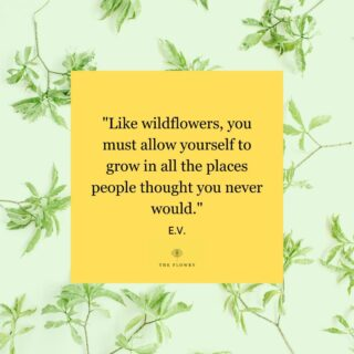 The idea of growing and changing and emerging again renewed and perhaps, in a different place, is so very hopeful, don't you think?  Happy Monday, #floralphiles! Happy summer solstice! 💐  FOLLOW @theflowry for best in bloomcraft for people, spaces and occasions & discover what's blooming all summer long on The Bloomlist.  #mondaymotivation #mantramonday #musings #quotes #empowerment #sayings #petalsofwisdom #flowers #florals #floweringeveryday #postivevibes #positivity #wordstoliveby #thegoodquote #qotd #mondayblooms #whatsbloomingnow  #bloombeam #bloomcraft #theflowry 